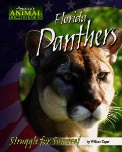 Florida Panthers: Struggle for Survival
