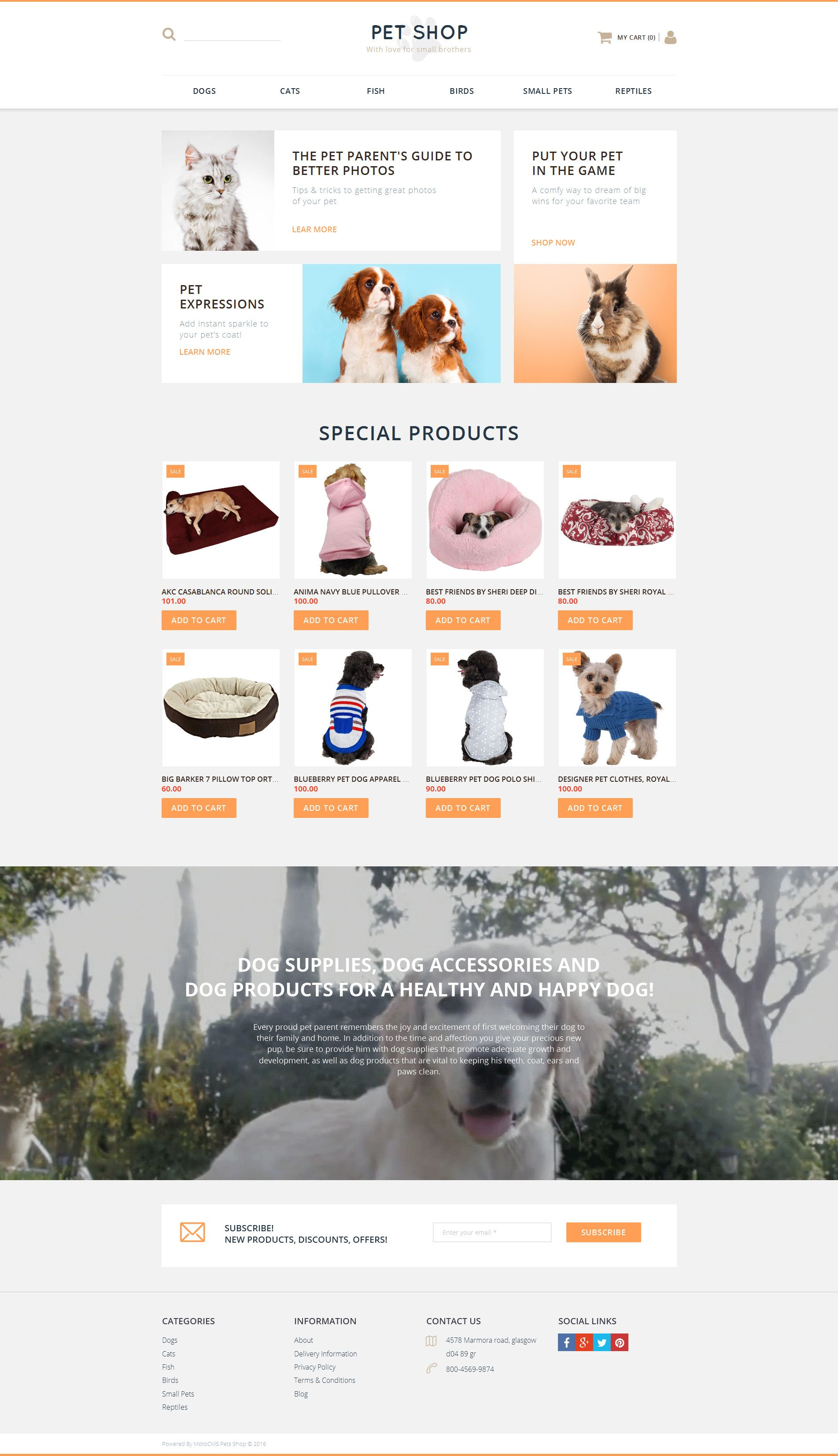 Pet Shop Responsive MotoCMS Ecommerce Template #58489