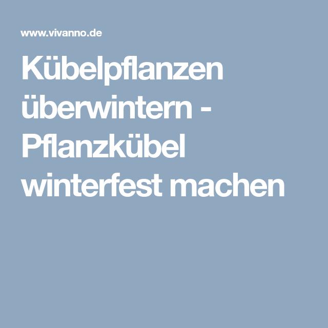 Kübelpflanzen überwintern - Pflanzkübel winterfest machen ...