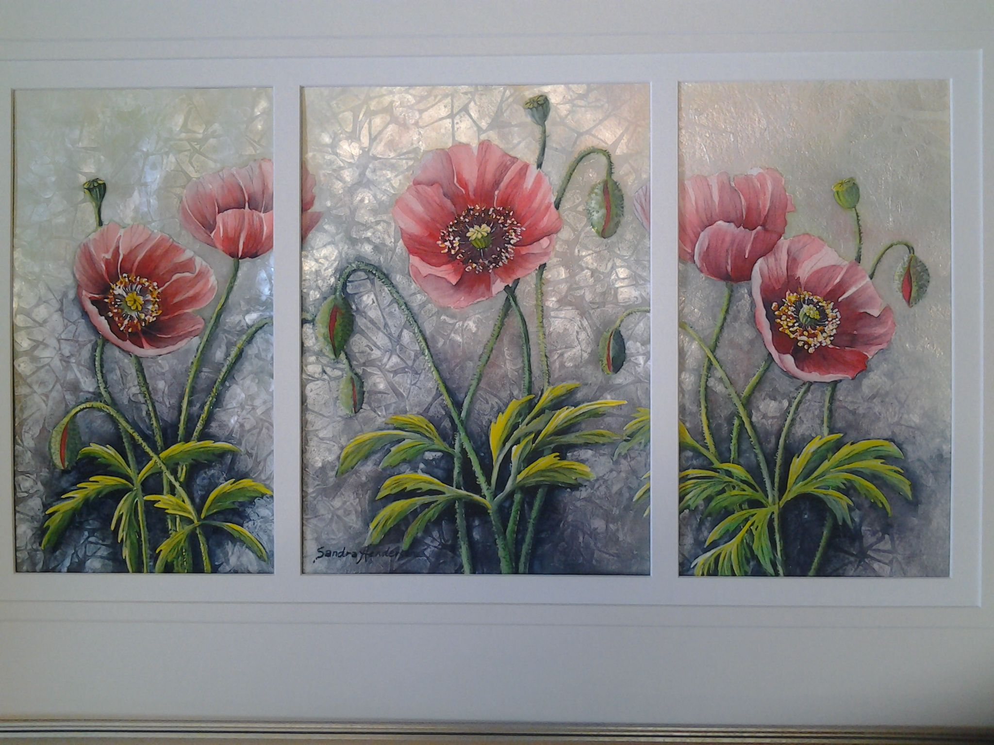 A Panoply of Poppies
