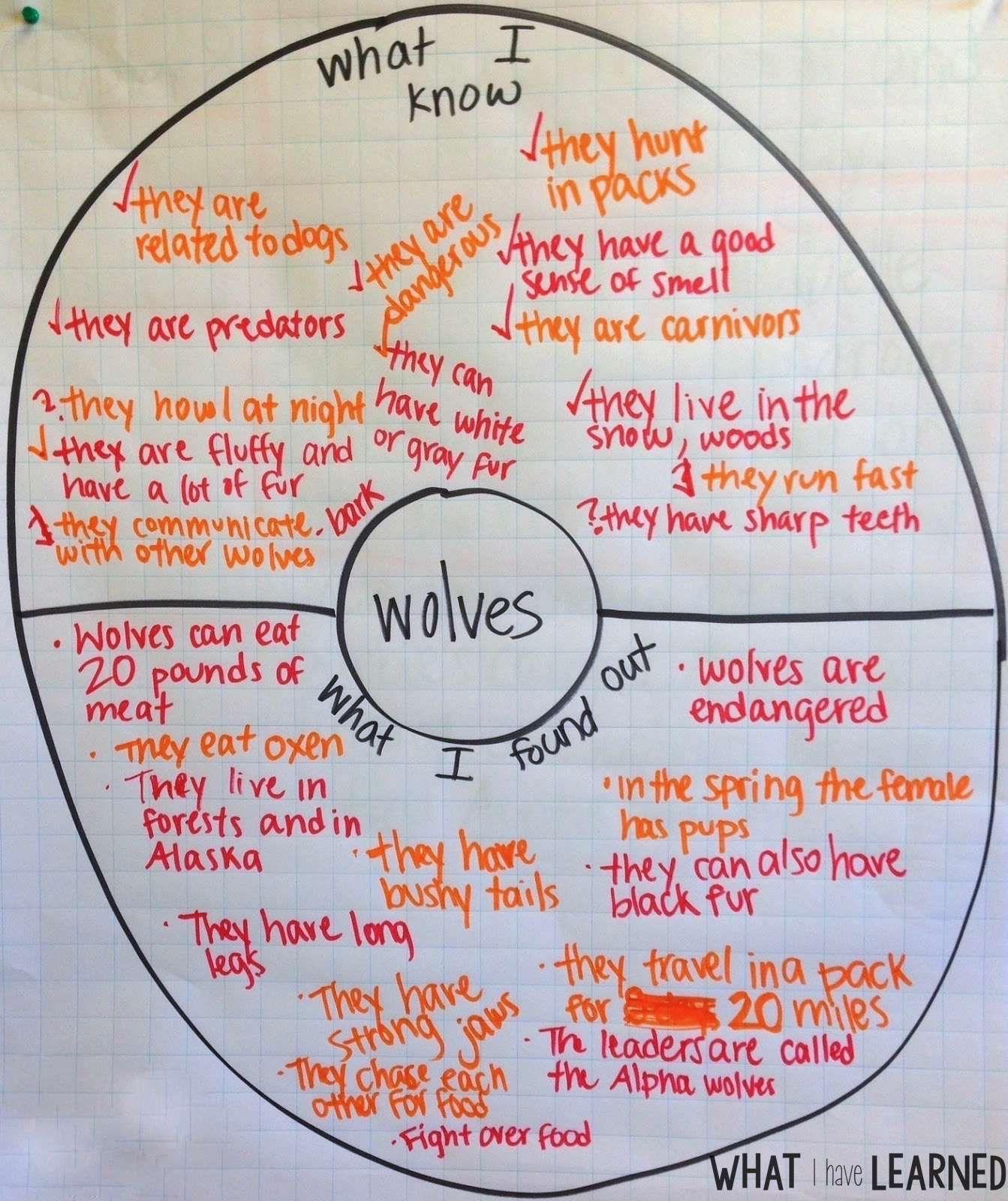 [+] Organizing Sentences Around A Central Idea Creates A An