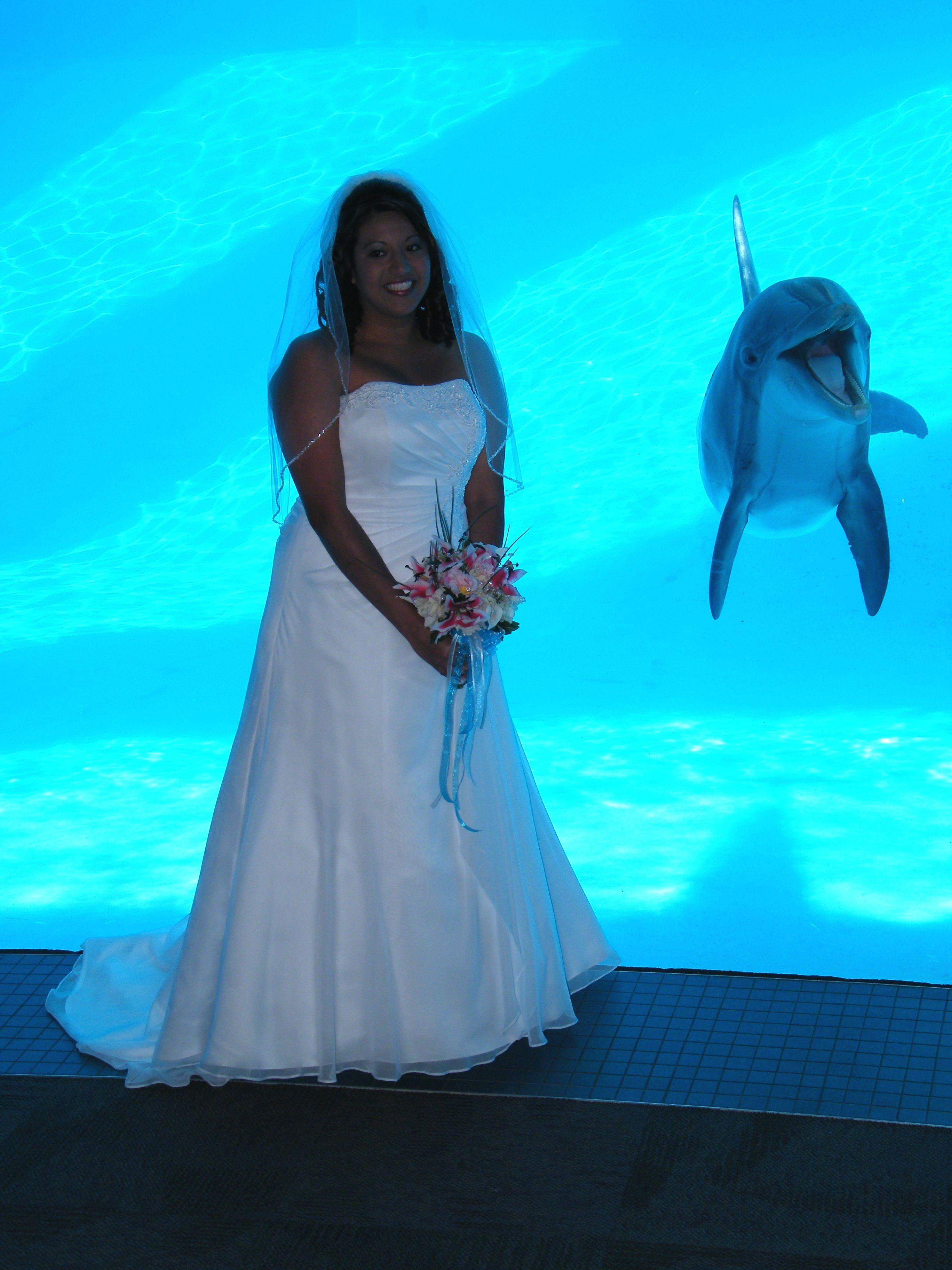 2d041a4626d0ccd6a4c5561daefb9298 Frais De Aquarium Design Pas Cher Conception