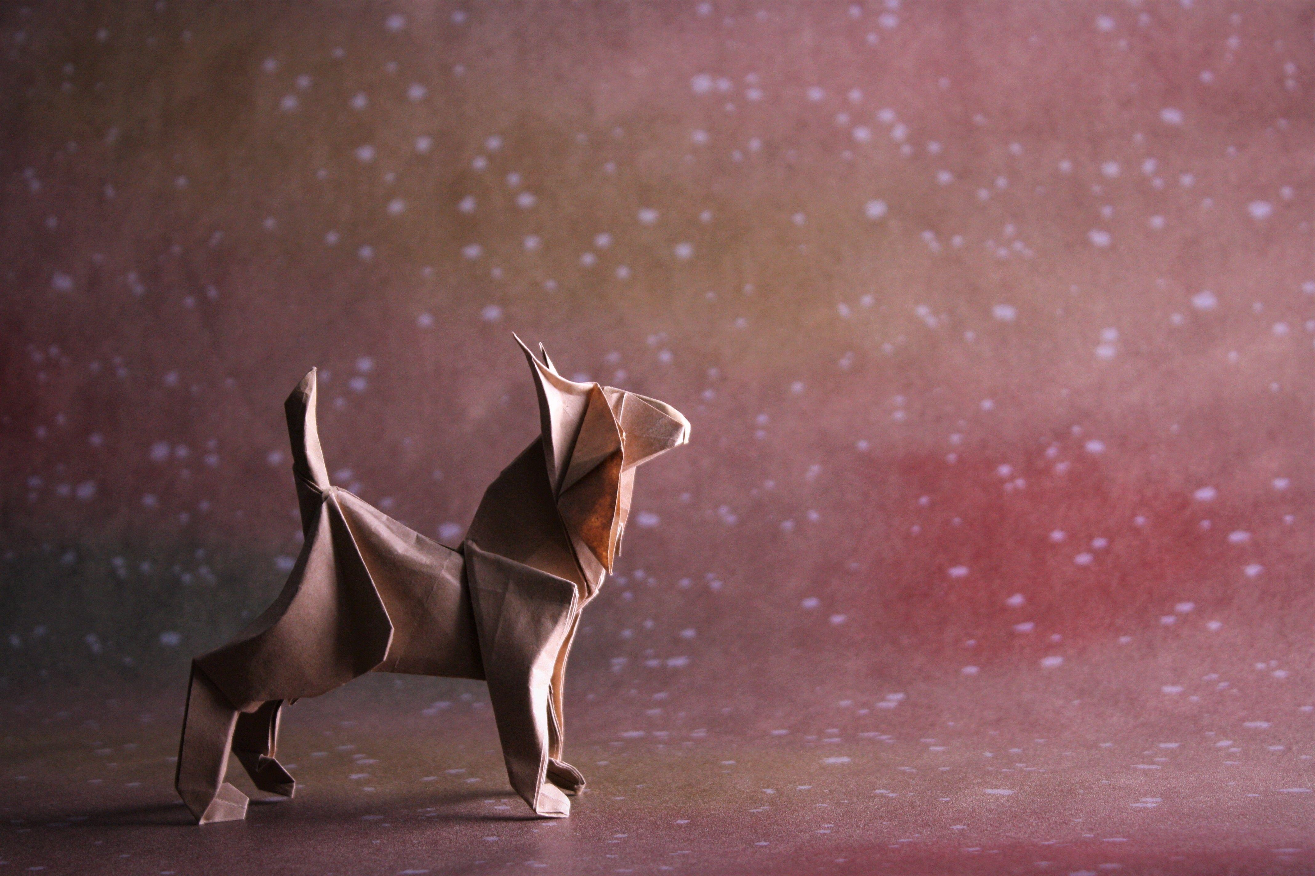Lynx Richard Galindo Flores Lynx Origami Art