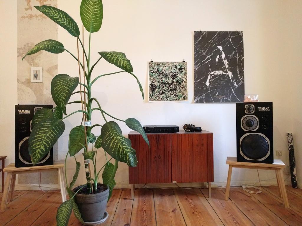Wohnzimmer inspiration kommode musik anlage und dekorative zimmerpflanze wohnung berlin - Wohnzimmer inspiration ...