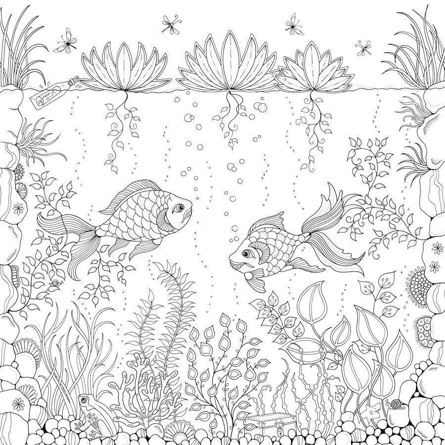 Coloringsco Adult Coloring Book Pages Secret Garden