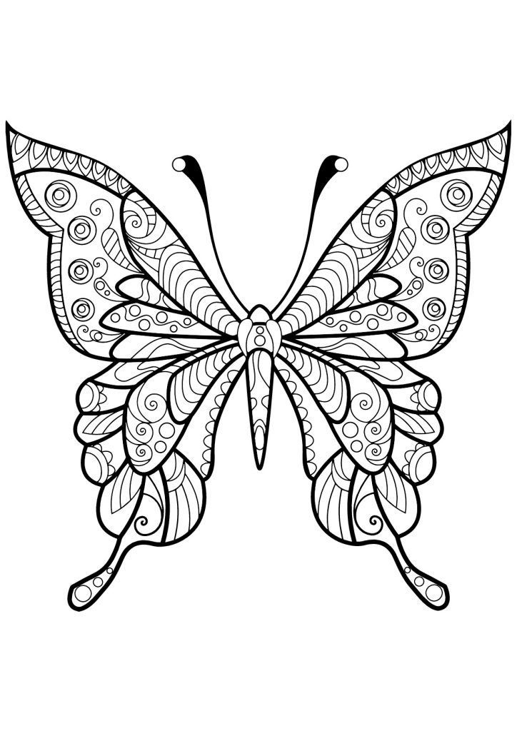 Butterfly coloring pages for adults butterfly coloring
