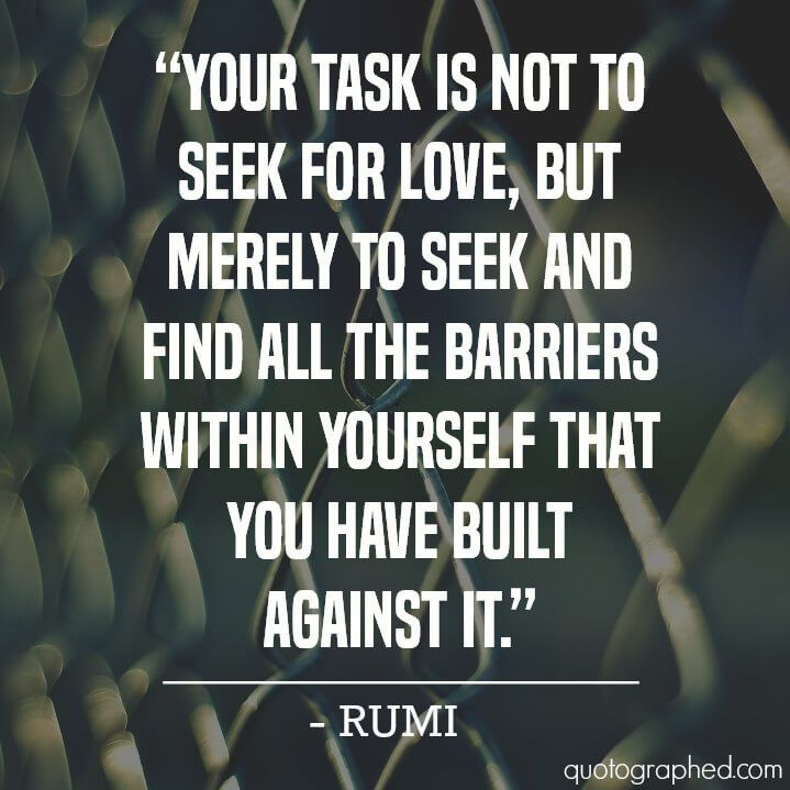 A Quote On Love By Rumi Your Task Is Not To Seek For Love But