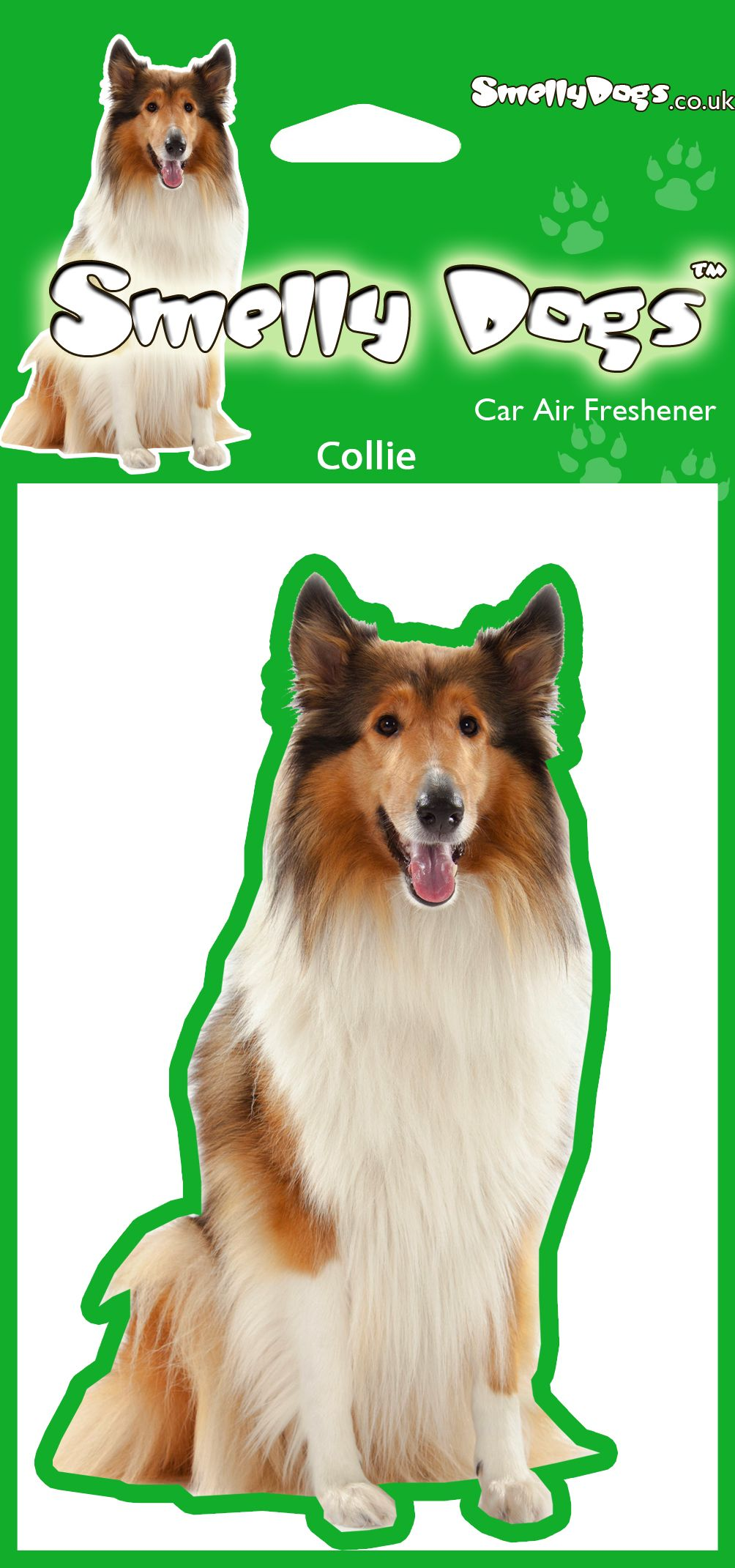 Smooth collie puppies price