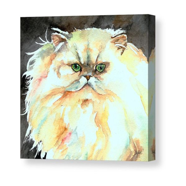 Chinchilla Cat Canvas Print In 2019 Products Canvas Prints