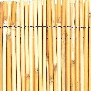 Arella Bambu Intermas Reedcane L 5 X H 1 M Prezzi E Offerte Online Leroy Merlin Giardino Naturale Bambu