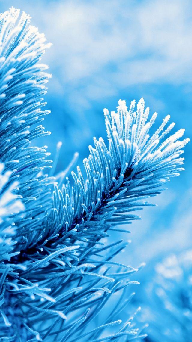 Winter wallpaper iphone 5s friends pinterest winter winter wallpaper iphone 5s voltagebd Gallery