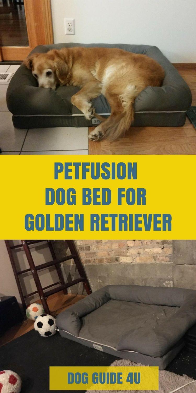 Best Dog Beds For Golden Retrievers Dog Bed Cool Dog Beds Big