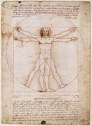 Leonardo da Vinci – Leonardo da Vincis teckning Den vitruvianske mannen utforskar den moderna människans proportioner.