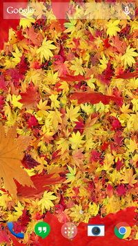 Autumn Leaves 3d Lwp Live Wallpaper Beautiful Nature Wallpaper Live Wallpapers Nature Wallpaper Falling leaves moving wallpaper