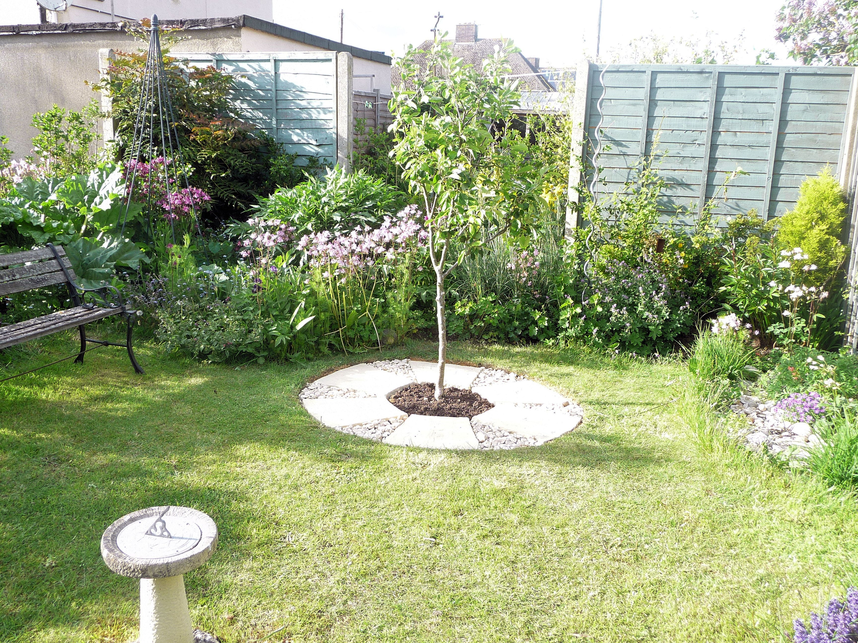 apple tree with new paving and gravel round my garden