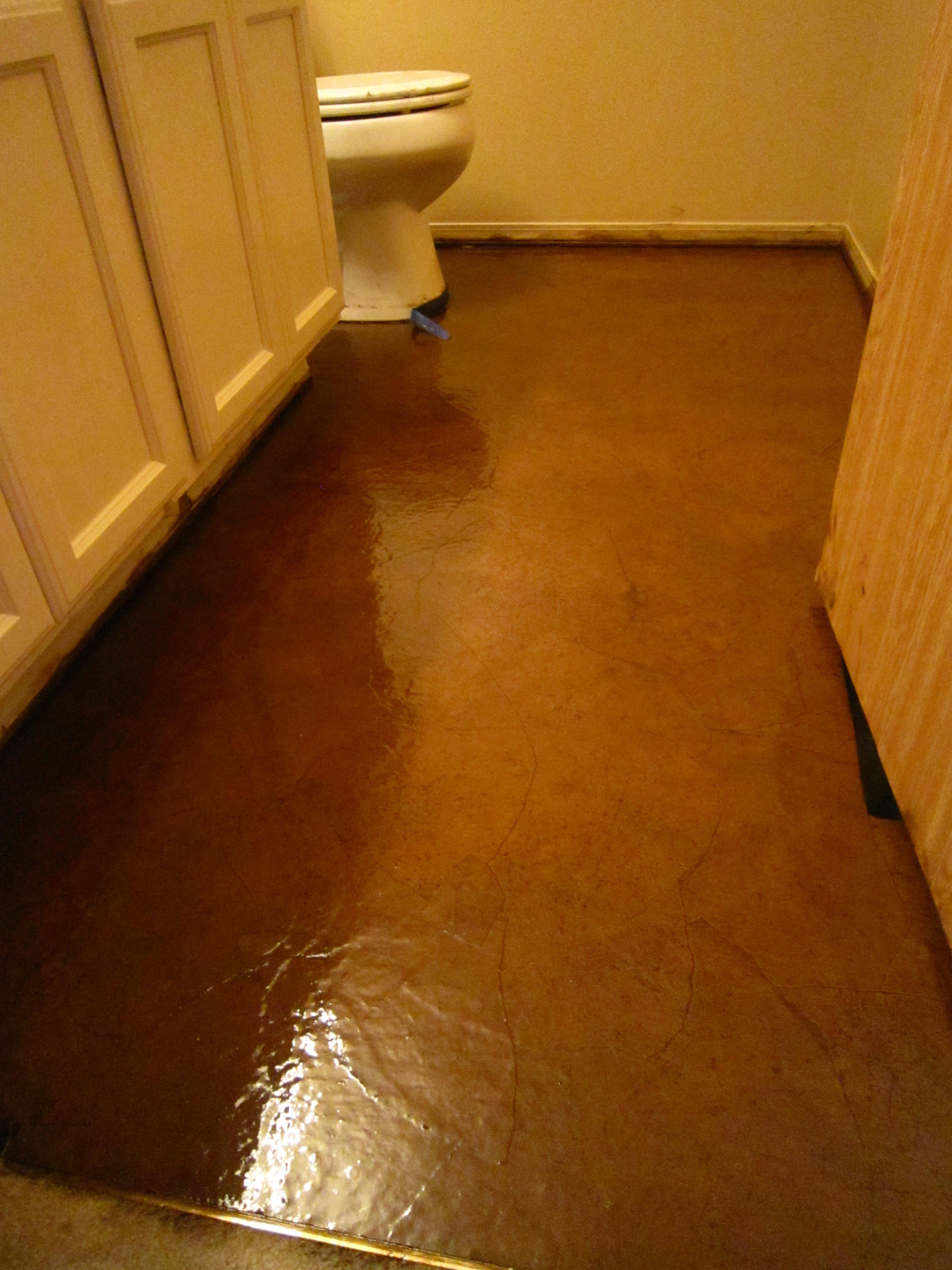 Diy stained brown paper floor awesomeness under 30 do it yourself diy stained brown paper floor awesomeness under 30 do it yourself hardwoodlaminate floor alternative solutioingenieria Choice Image