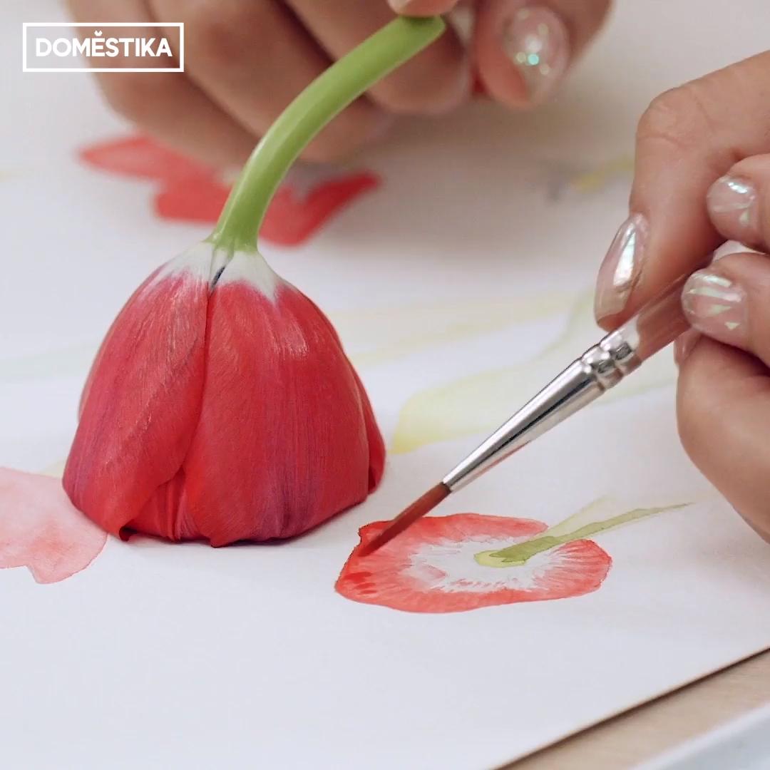Ilustración botánica con acuarela