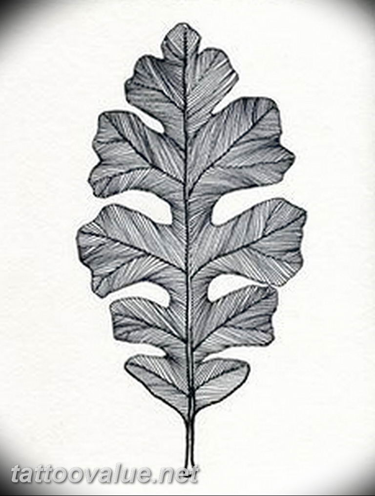 Photo Oak Leaves Tattoo 25 05 2019 097 Oak Leaves Tattoo Idea Tattoovalue Net Tattoovalue Net Oak Leaf Tattoos Leaf Drawing Drawings