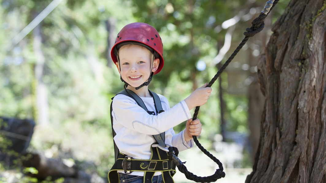 Determining Your Child's Personality Type | Zip line kits ...