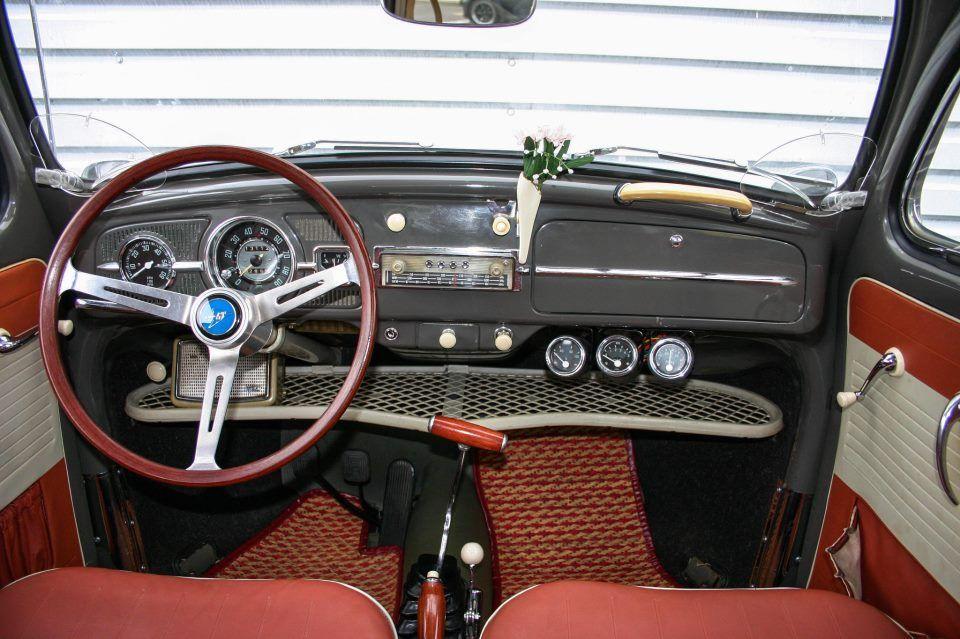 beetle inside
