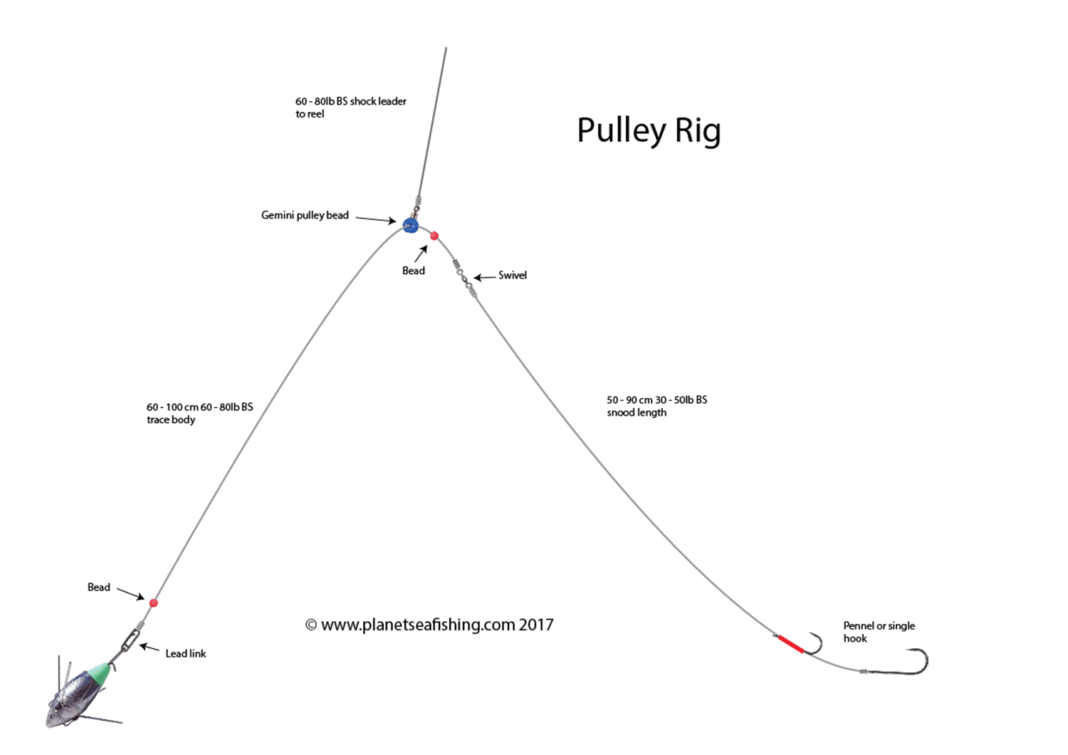 The Pulley Rig Fishing Rigs Rigs Sea Fishing