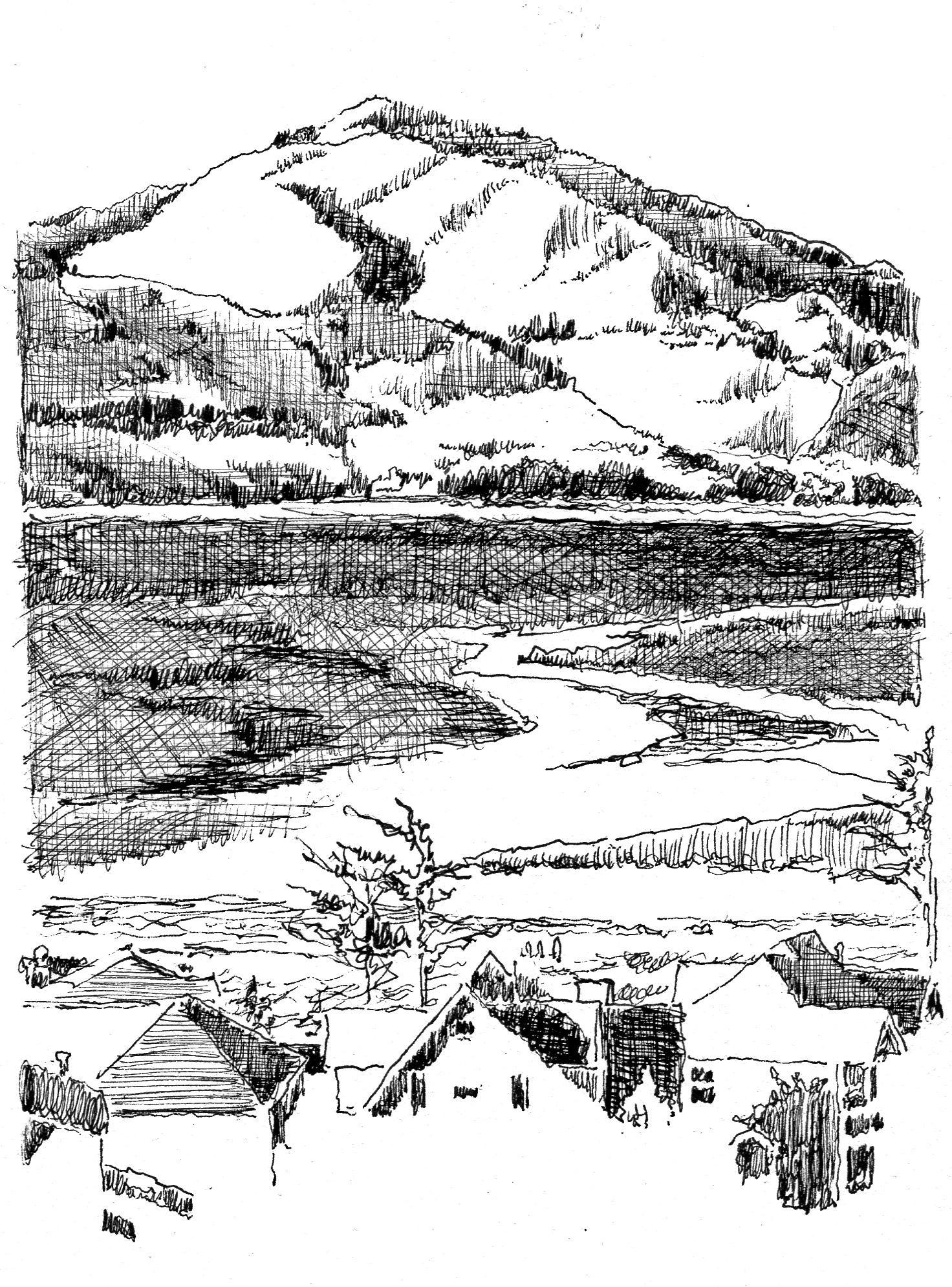Line Drawing Garden : Line drawing landscape general illustration