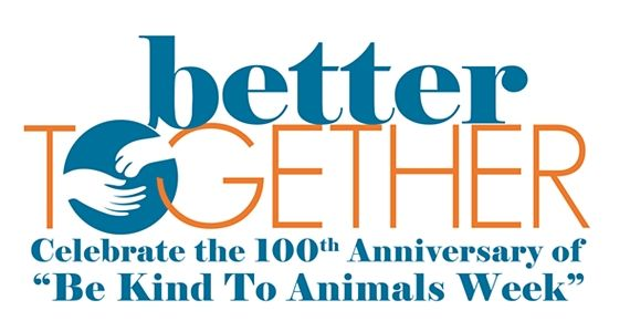 Mhhs Be Kind To Animals Contest Animals Kindness Contest