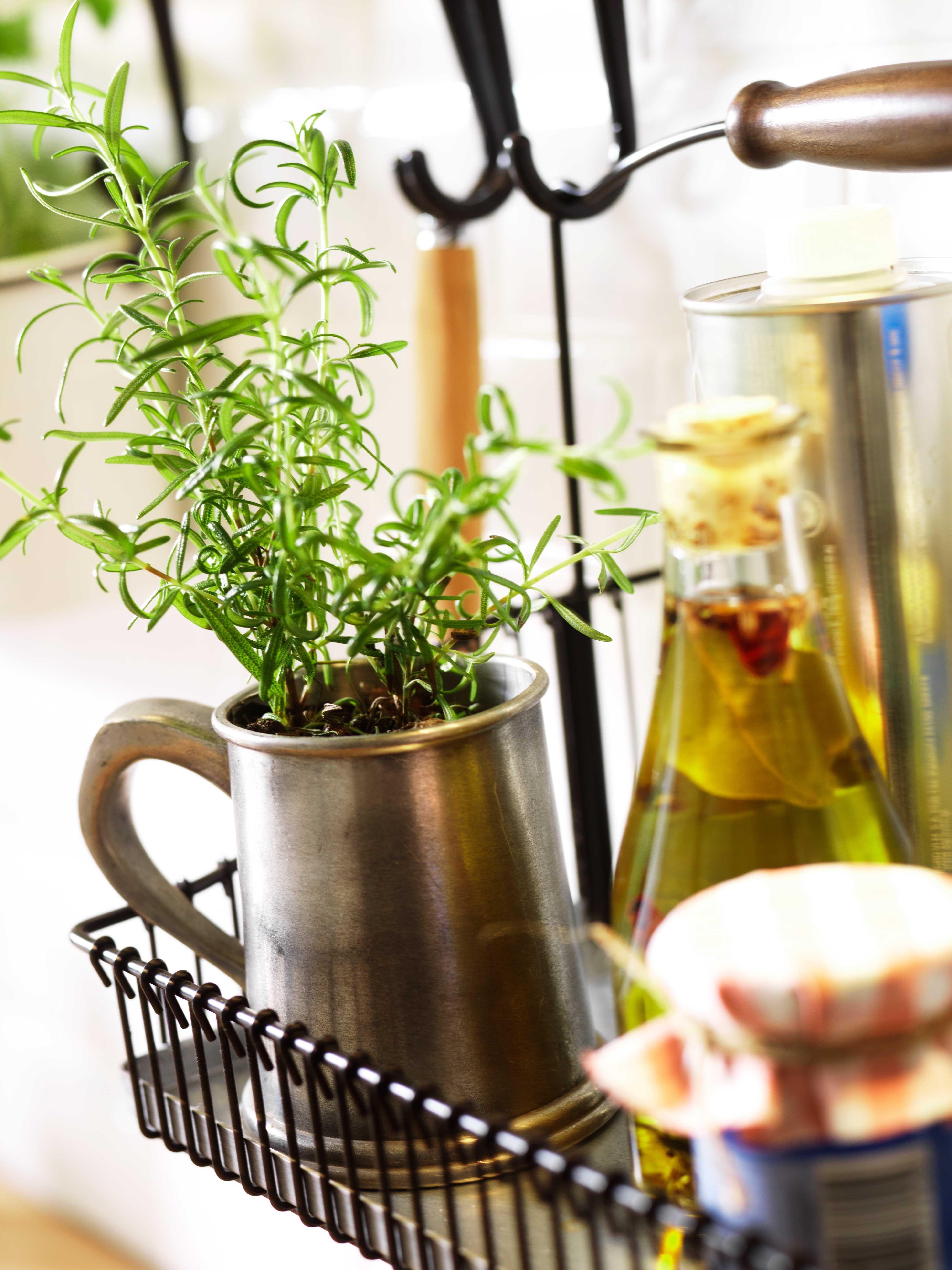 k chenm bel k chenger te g nstig kaufen herbs pinterest kitchen home kitchens and ikea. Black Bedroom Furniture Sets. Home Design Ideas