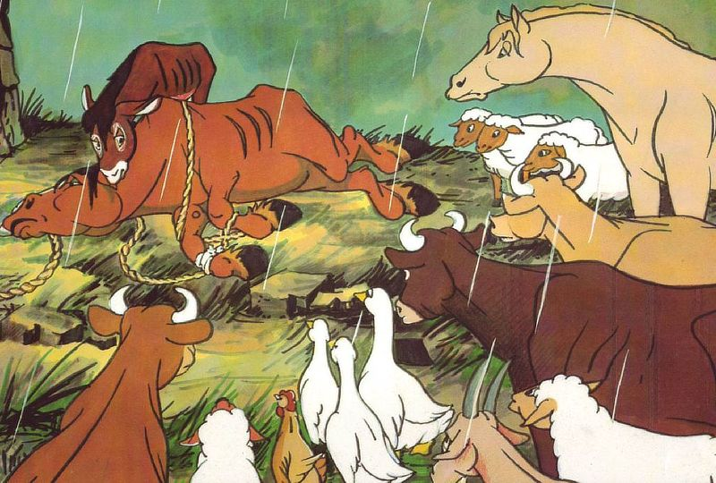 Read First, Watch After: George Orwell's Animal Farm | WATCH