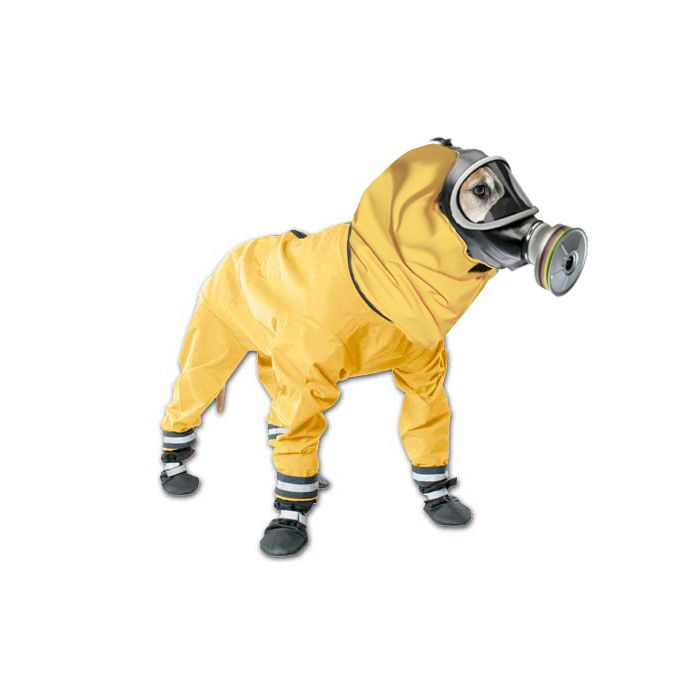 Hazmat Suit For Doggie Hazmat Suit Suits Street Culture