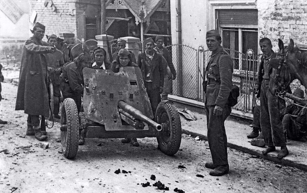 45mm M1937 dans Belgrade