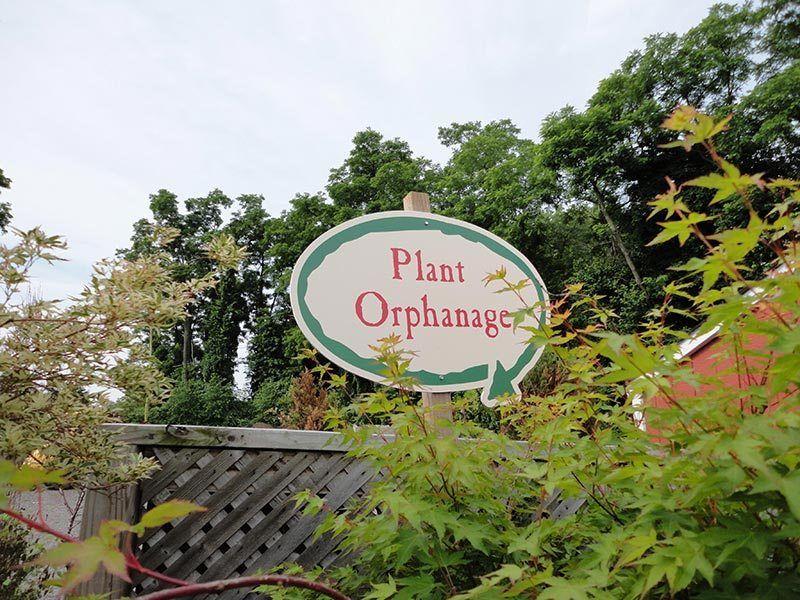 Signage Lawn Garden Retailer