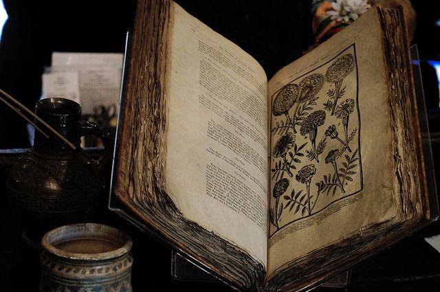 Dr Halls Book of Medicine
