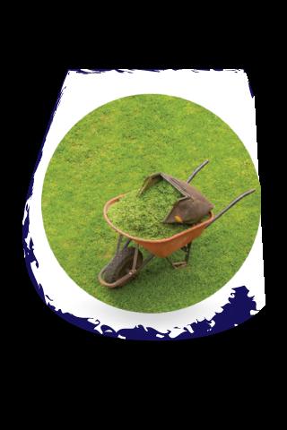 Erba Sfalciata. Tipico di alcuni Vitigni ALLOCTONI.  Cut Grass. Typically in international grapes