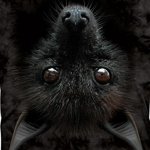 Bat Head Animal T Shirt Child Unisex The Mountain