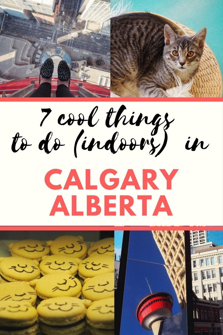 7 Cool Things To Do Indoors In Calgary, Alberta Calgary
