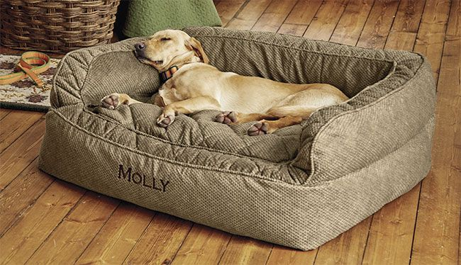 Orvis Comfortfill Couch Dog Bed Dog Couch Bed Dog Beds For Small Dogs Cool Dog Beds