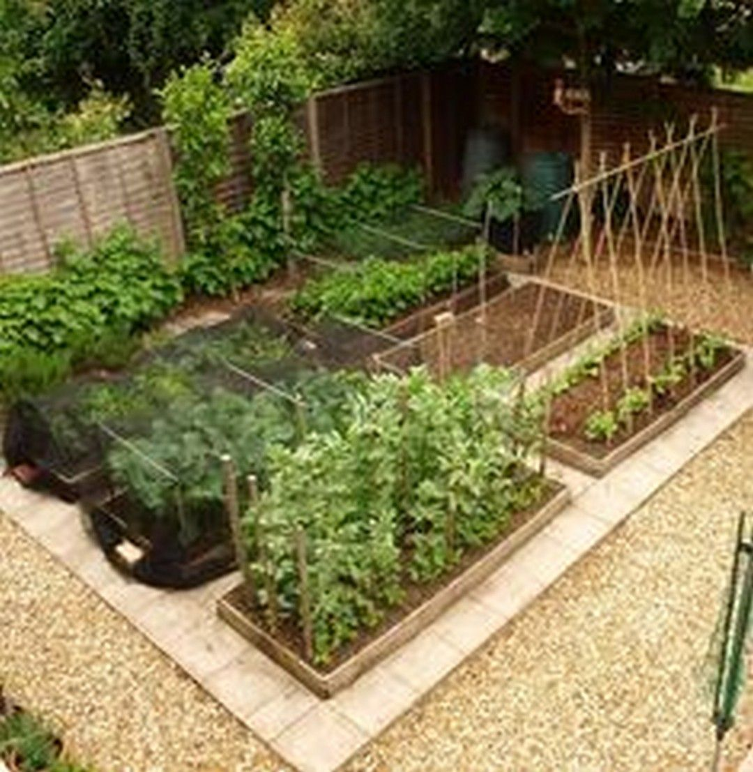 65+ Best Small Vegetable Garden Ideas on a Budget | Raised Beds and ...