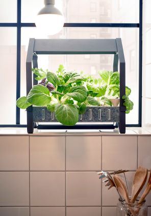 Ikea easy to grow indoor gardening kit indoor gardening space ikea indoor gardening kryddavaxer series available april hydroponic indoor gardening series that lets you grow your own tasty lettuce and herbs in water solutioingenieria Choice Image