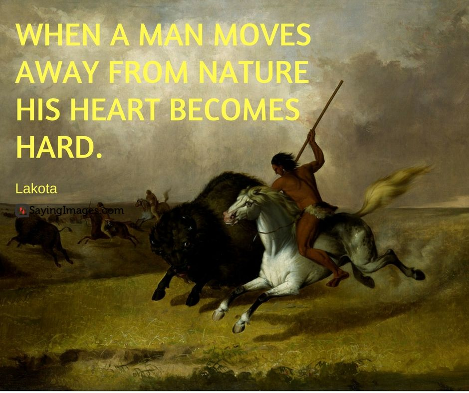 60 Native American Quotes, Sayings and Wisdom # ...
