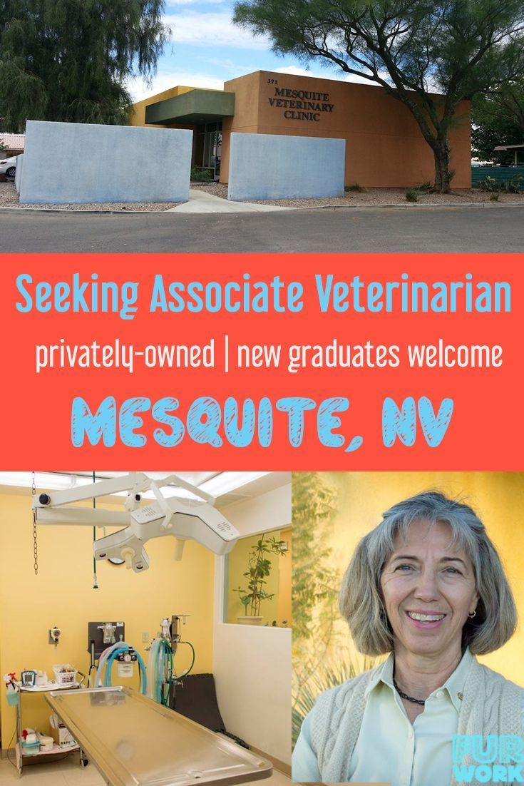 Associate Veterinarian, Mesquite Veterinary Clinic, NV USA