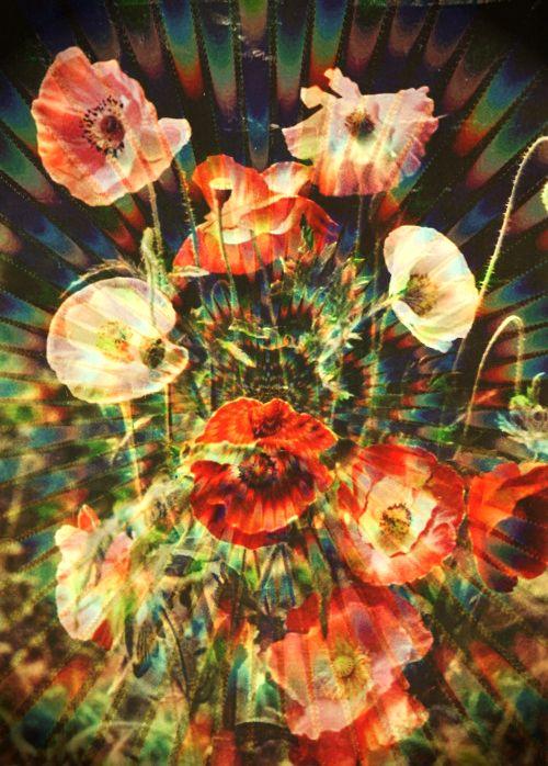digital flowers, florals, space florals