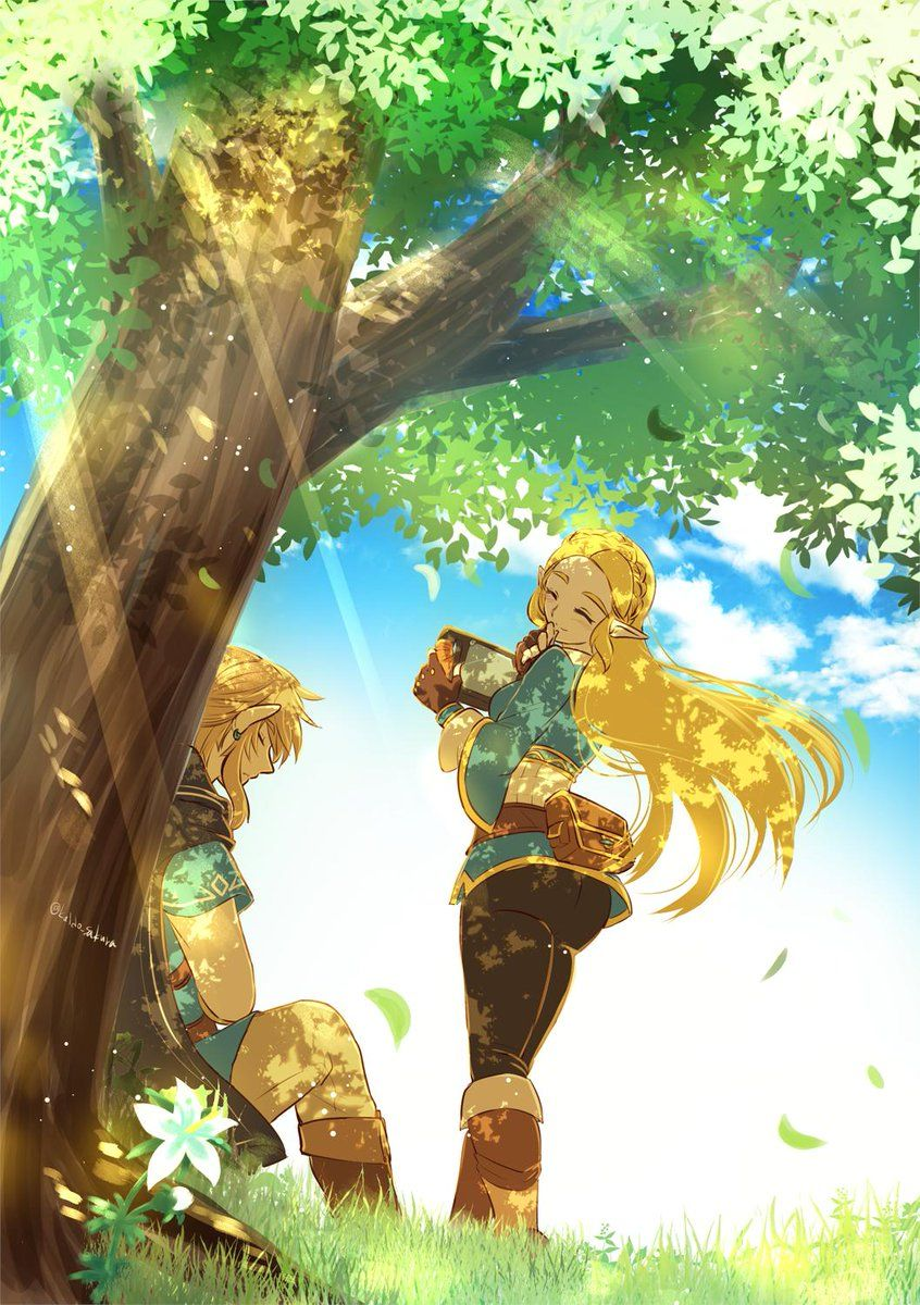 Pin By Alba Lpzz12 On Link W Zelda Art Legend Of Zelda Legend Of Zelda Breath