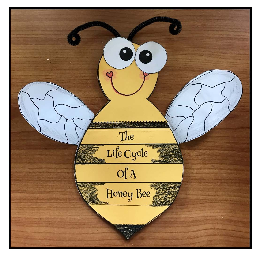 Life Cycle Of A Honey Bee Crafts