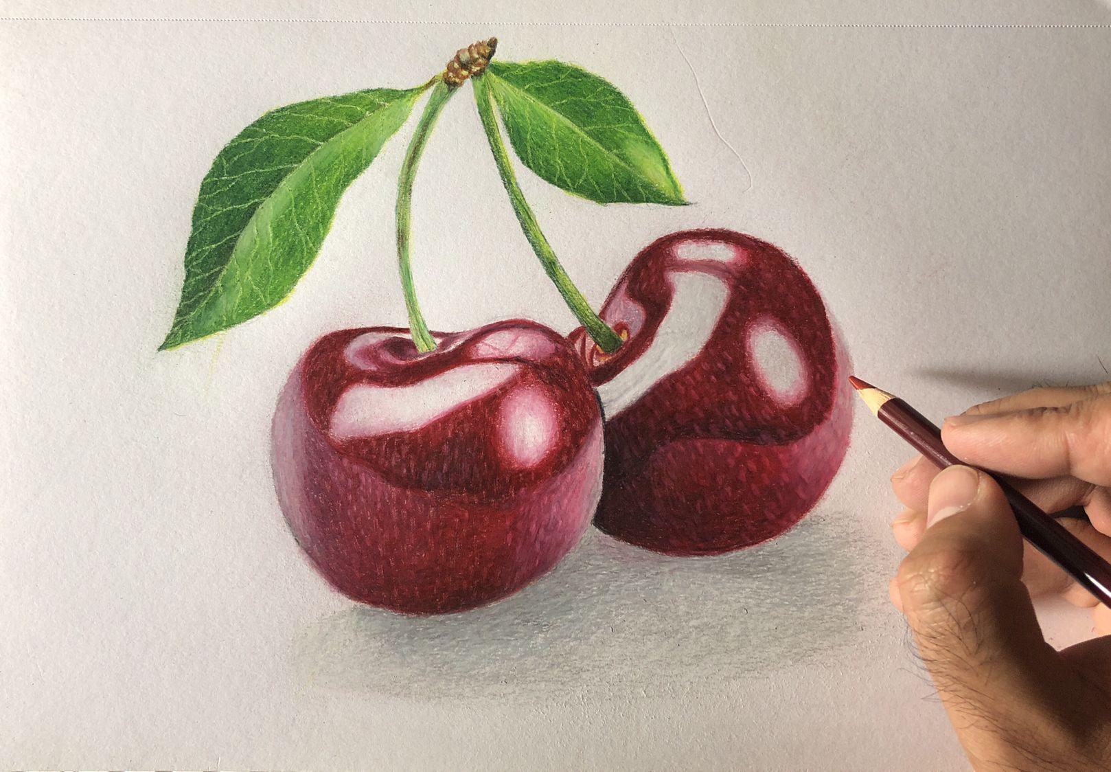 Cherries Drawing Cherry Drawing Fruit Art Drawings Cherries Painting