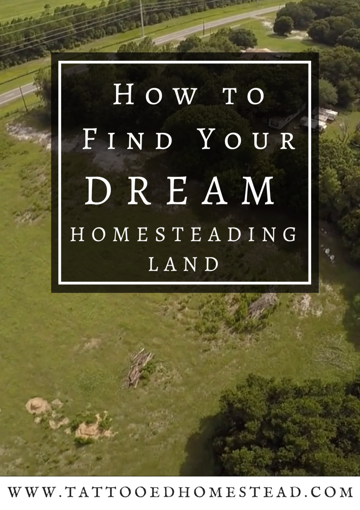 How to find your dream homesteading land homesteading for How to get money to buy land