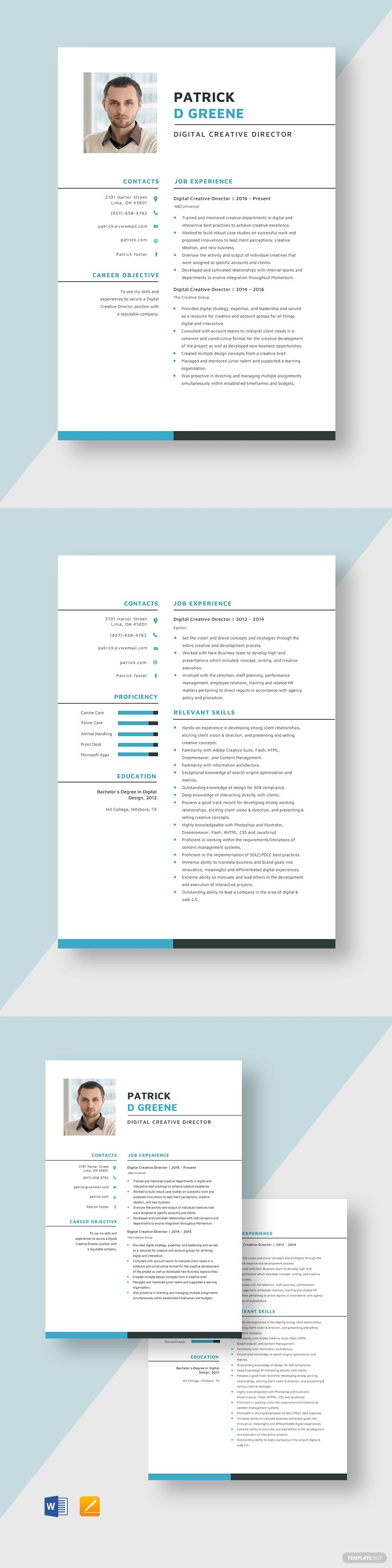 Digital Creative Director Resume Resume design template