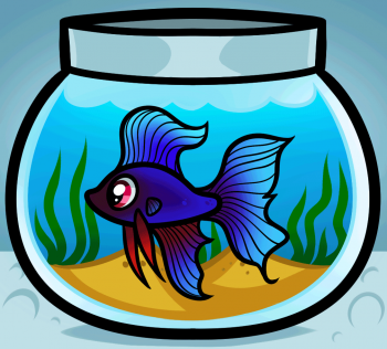 How To Draw A Fish Tank How To Draw Pinterest Drawings Fish