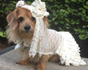 Dog Wedding Dress Costume By Lindaswear On Etsy