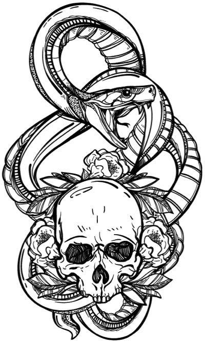 adult coloring skull coloring book - Skull Coloring Book